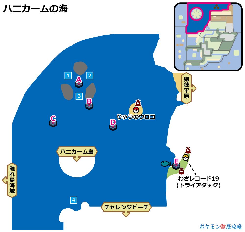 ポケモン トロピカル ビーチ