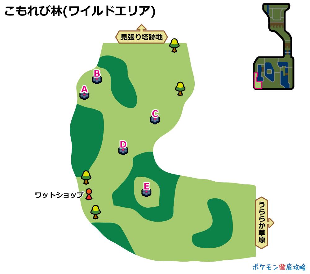 ワイルド エリア 天候 剣 盾