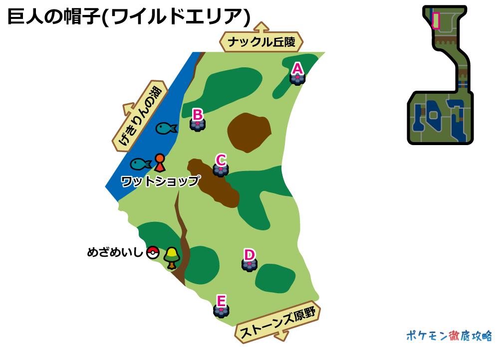 ポケモン剣盾 ワイルドエリア